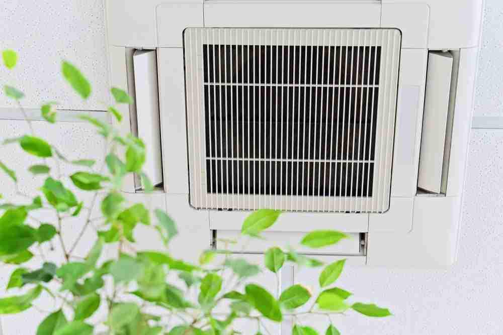clean office air